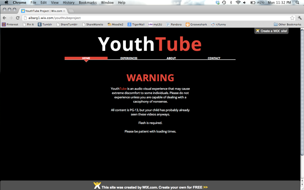 YouthTube Project: A Cacophony of Nonsense (1/4)