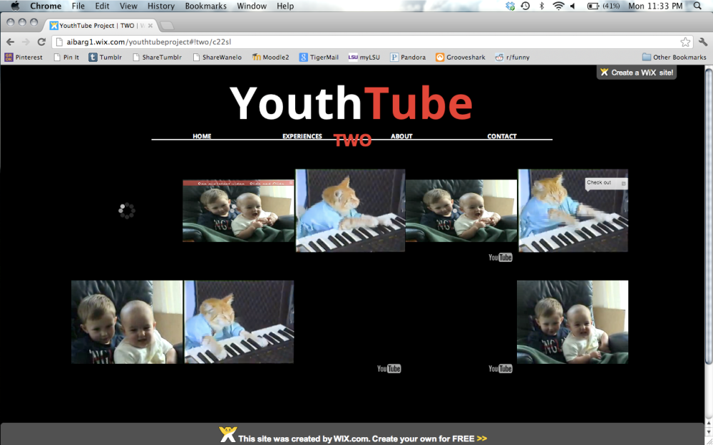 YouthTube Project: A Cacophony of Nonsense (2/4)